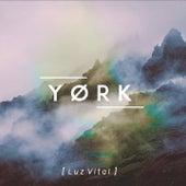 Luz Vital by York