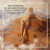 Goldmark: Orchestral Works von Robert Schumann
