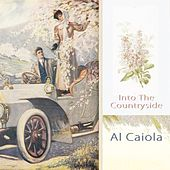 Into The Countryside by Al Caiola