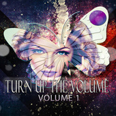 Turn up the Volume, Vol. 1 von Various Artists