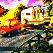 Camping Hits de Various Artists