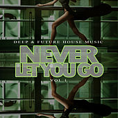 Never Let You Go - Deep & Future House Music, Vol.1 by Various Artists