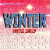 Winter Hits 2017 von Various Artists