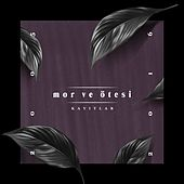 Kayıtlar 2005-2016 by Mor ve Ötesi