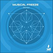 Musical Freeze by Various Artists