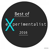 Best of Experimentalist 2016 by Various Artists