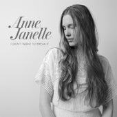 I Didn't Want to Break It by Anne Janelle