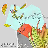 I Just Wanna by Big Wild