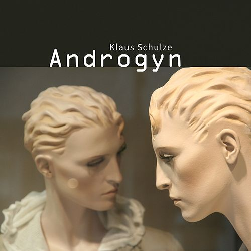 Androgyn by Klaus Schulze
