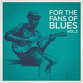 For the Fans of Blues, Vol. 2 by Various Artists