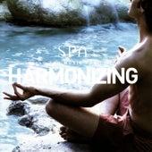 Harmonizing (Spa Series) by Global Journey
