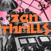 Zen Thrills de Omar Rodriguez-Lopez
