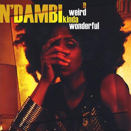 A Weird Kinda Wonderful by N Dambi