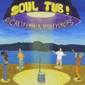 Soul Tub! by The California Honeydrops