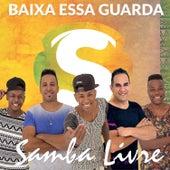 Baixa Essa Guarda de Samba Livre