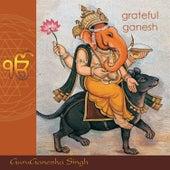 Grateful Ganesh by GuruGanesha Singh