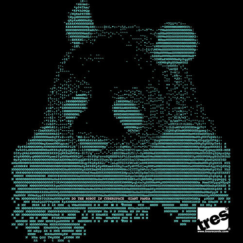 Do The Robot In Cyberspace by Giant Panda