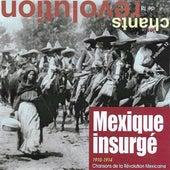 Mexique insurgé: Chansons de la révolution mexicaine (1910-1914) [Collection