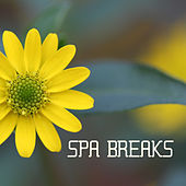 Spa Break - Spa Background Music by S.P.A