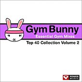 Gym Bunny Essential Gym Mixes Vol. 2 (Top 40 Collection: 130-140 BPM) by Various Artists