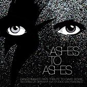 Ashes to Ashes de Dangermaker