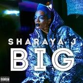 Big by Sharaya J