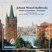 Kalliwoda: Violin Concertinos & Overtures by Various Artists