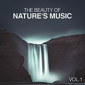 The Beauty of Nature's Music de Various Artists