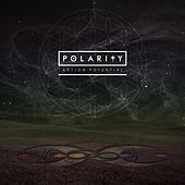 Action Potential by Polarity