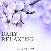 Daily Relaxing, Vol. 2 (Chill Out & Ambient Music In Perfection) by Various Artists