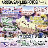 Arriba San Luis Potosi, Vol. 5 by Various Artists