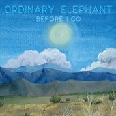 Before I Go by Ordinary Elephant