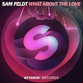 What About The Love van Sam Feldt