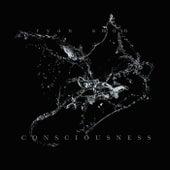Consciousness by Ryan Amon