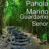 Guardame Senor by Pahola Marino
