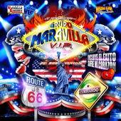 Route 66 de Grupo Maravilla