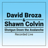 Shotgun Down The Avalanche de David Broza