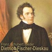 Schubert: Lieder von Various Artists