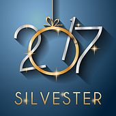 Silvester 2017 von Various Artists