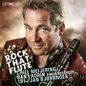 Rock That Flute de Dan Laurin