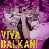 Viva Balkan! by Various Artists