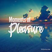 Moments of Pleasure, Vol. 1 (Jazzy & Smooth Chill Out Tunes) by Various Artists