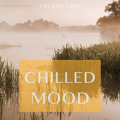 Chilled Mood, Vol. 2 (Finest in Chill Out & Ambient Music) by Various Artists