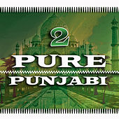 Pure Punjabi 2 by Various Artists