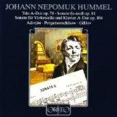 Hummel: Chamber Sonatas by Various Artists