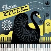 Chopin Etudes von Various Artists
