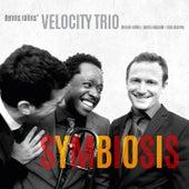 Symbiosis by Dennis Rollins Velocity Trio