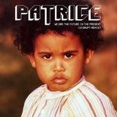 We Are the Future In the Present (Disrupt Remix) de Patrice