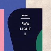 Raw Light II by Botany