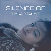 Silence of the Night - Soft Pillow, Warm Blanket, Relaxing Time, Nice Well-Being de Healing Sounds for Deep Sleep and Relaxation